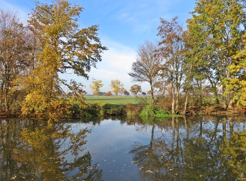 2018-11-07 bei Lüchow an der Jeetzel (14) Flussufer